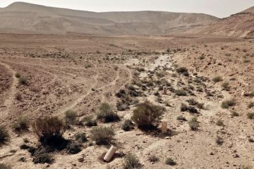 Six milestone Stations Discovered in the Negev along the Petra-Gaza Incense Route
